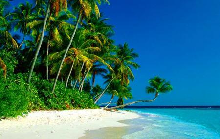 Conco Island Image