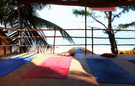 Shiva Yoga Centre Image