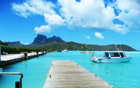 Topdive Bora Bora Image