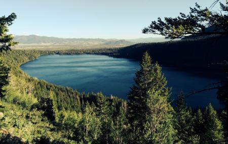 Phelps Lake Trail Image