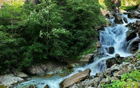 Altindere Vadisi National Park Image