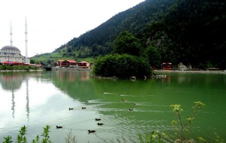 Uzungol Lake Image