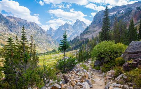 Cascade Canyon Trail Image