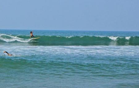 Surf Wala Image