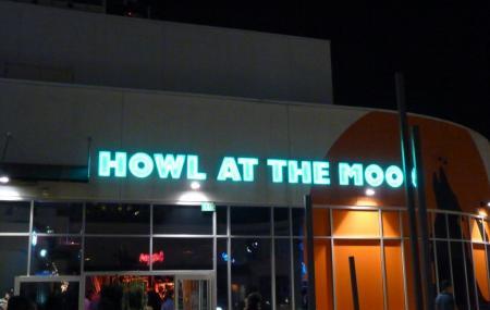 Howl At The Moon Image