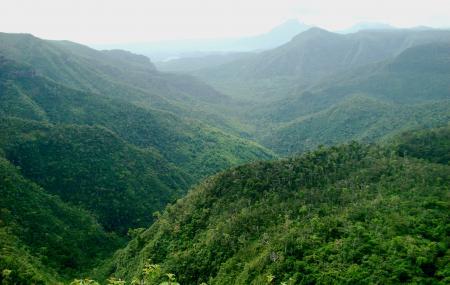 Black River Gorge National Park Image