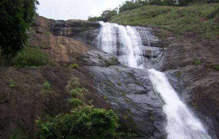 Palaruvi Falls Image