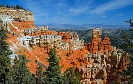 Ponderosa Canyon Image