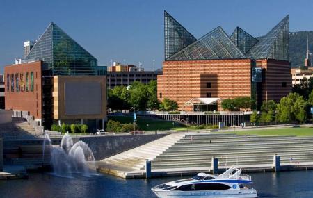 Tennessee Aquarium Image