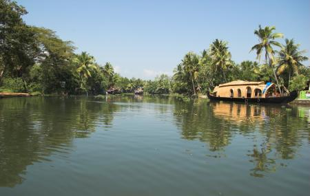 Ashtamudi Lake Image