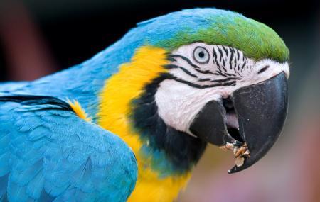 Jardin Zoologique Tropical Image