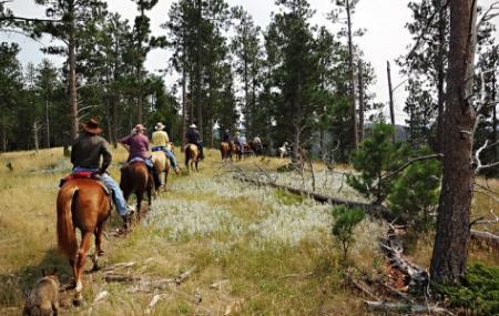 Guided Horseback Trail Rides Image