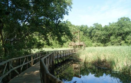 Parque Isla Salamanca Image