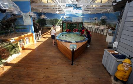 Marine Science Center Image