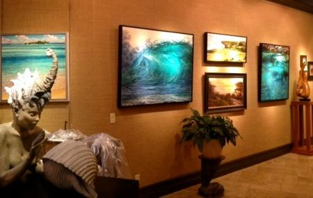 Reeflections Fine Art Gallery Image
