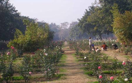 Chandigarh Rose Garden Image