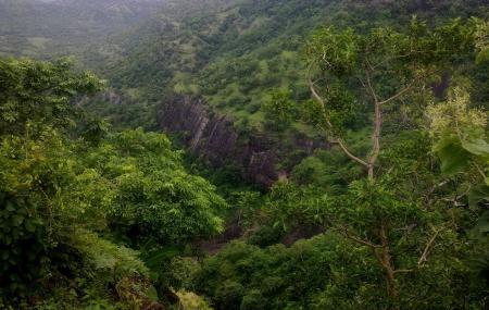 Gautala Wildlife Sanctuary Image