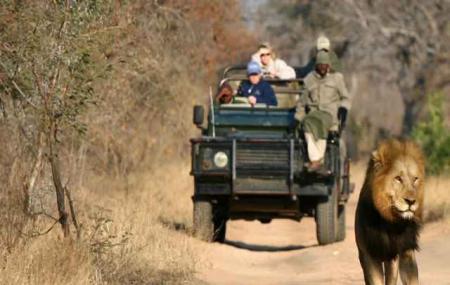 Pilanesberg Safaris Image