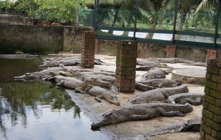 Miri Crocodile Farm Cum Mini Zoo Image