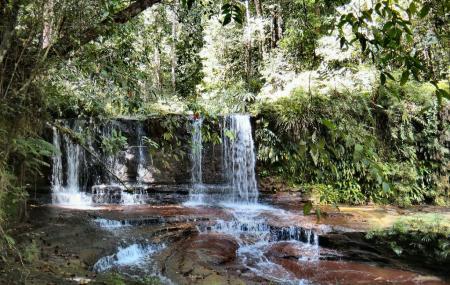 Lambir Hills National Park Image