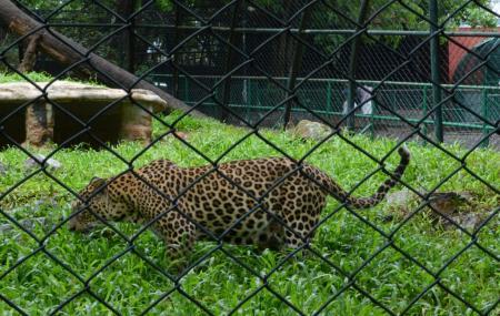 Thiruvananthapuram Zoo Image