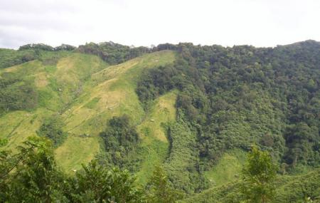 Nokrek National Park Image
