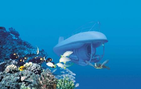 Maui Undersea Adventures Image