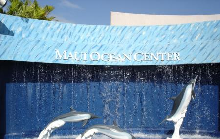 Maui Ocean Center Image