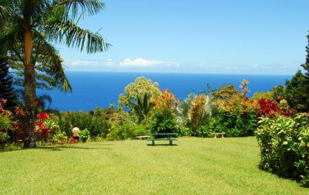 Maui Garden Of Eden Image