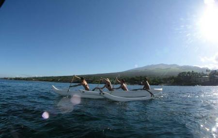 Hawaiian Paddle Sports Image
