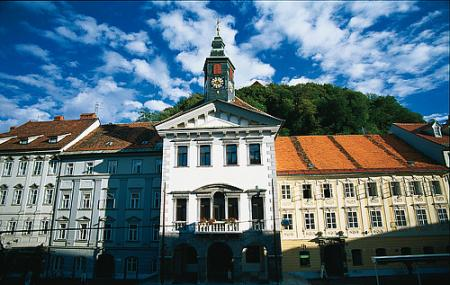 Town Hall Image