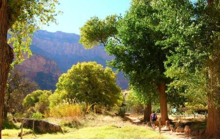 Indian Garden Image