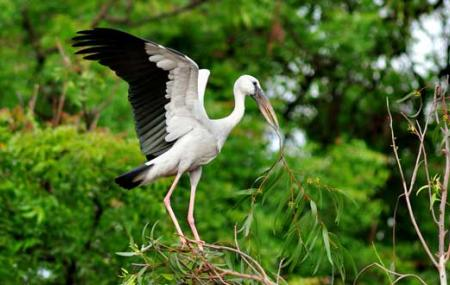 Kumarakom Bird Sanctuary,vembanad Lake And Pathiramanal Island Image