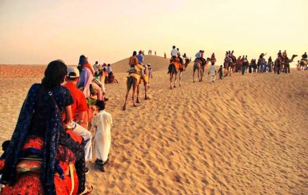 Pushkar Camel Safari Tour Image