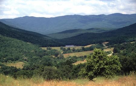 Strandja Mountain Image