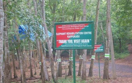 Kottoor Kappukadu Elephant Rehabilitation Centre Image
