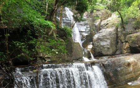 Vazhvanthol Waterfalls Image