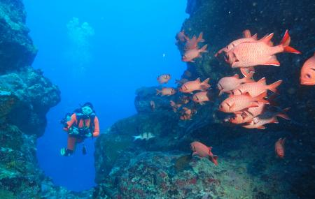 Ticabo Diving Centre Image