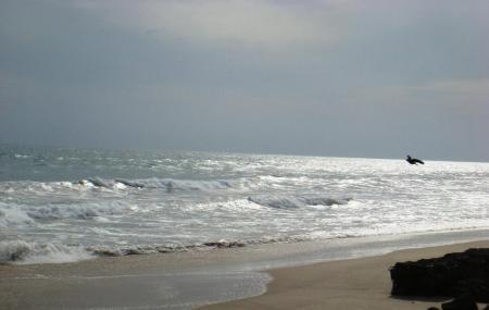Dhanushkodi Beach Image