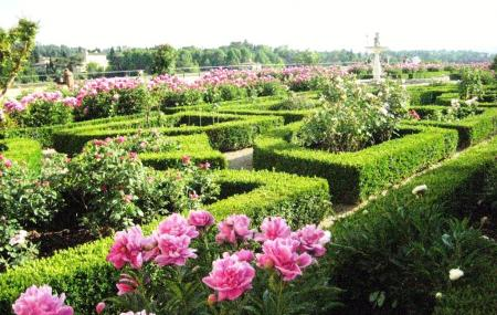 Boboli Garden Image