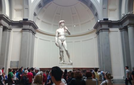 Accademia Gallery Image