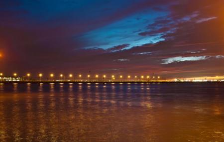 Ponte Della Liberta Image