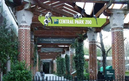 Central Park Zoo Image