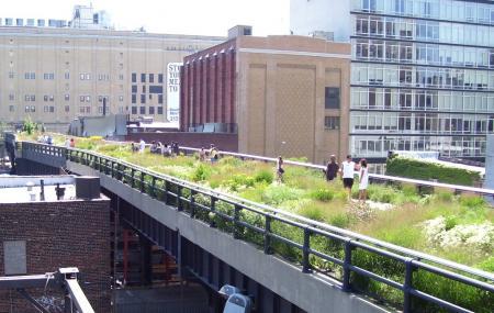 High Line Image