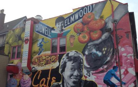 Elmwood Village Image