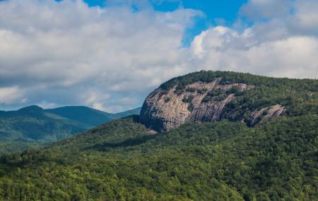 Pisgah National Forest Image