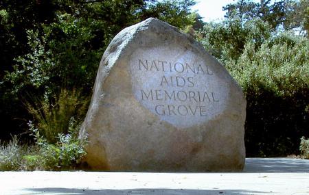 National Aids Memorial Grove Image