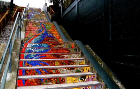 Hidden Garden Steps Image