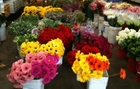 San Francisco Flower Mart Image