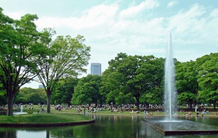 Yoyogi Park Image